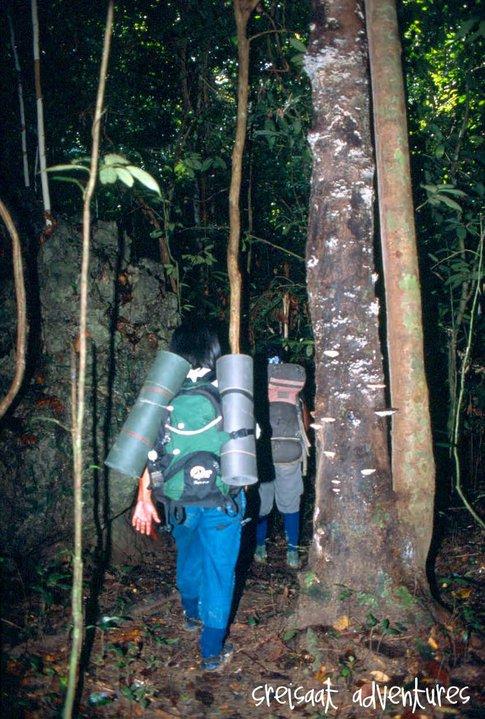 Entering Kuala Lipis Jungle.