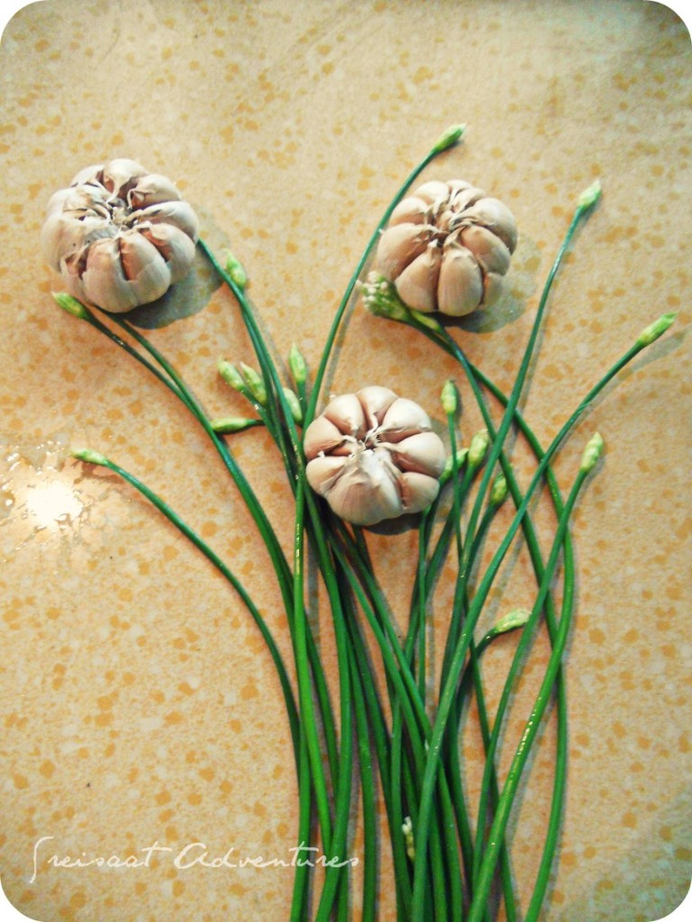 Garlic and chives bouquet.